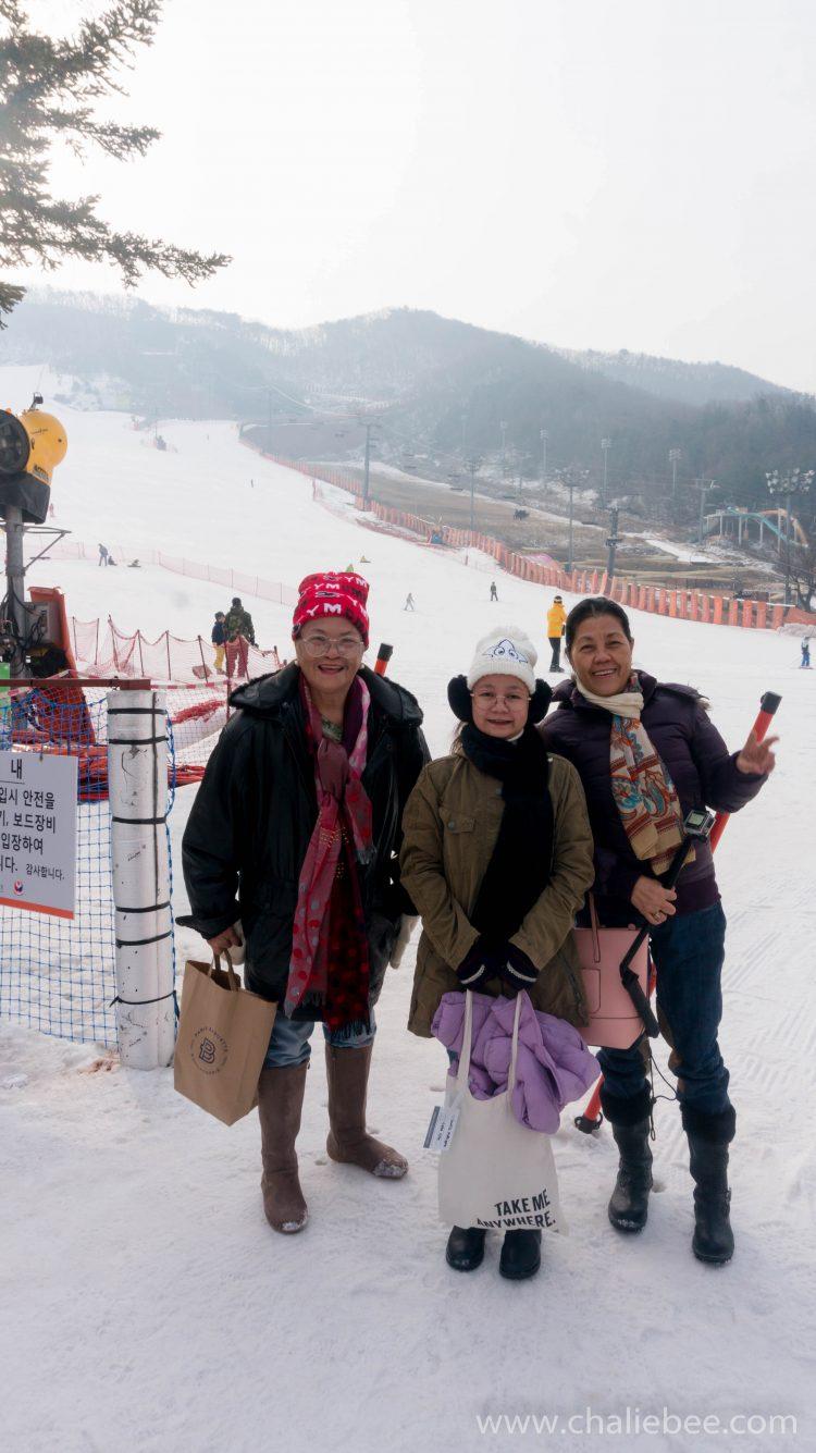 yangji pine ski resort